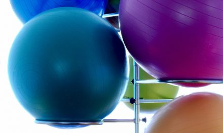 Stability Ball or Exercise Ball Review
